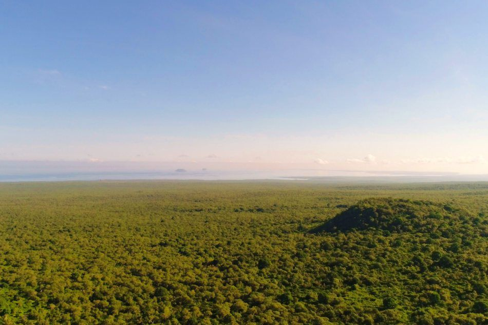 The view from our camp looks out over the highlands of Santa Cruz, Galapagos