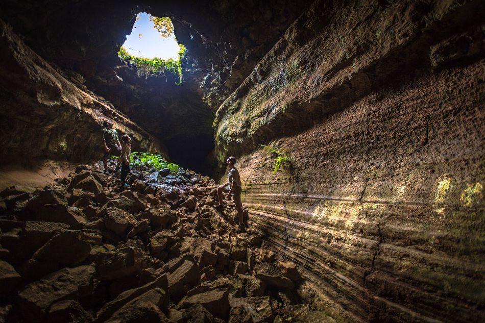 Lava tunnels in the highlands of Santa Cruz, Galapagos Islands