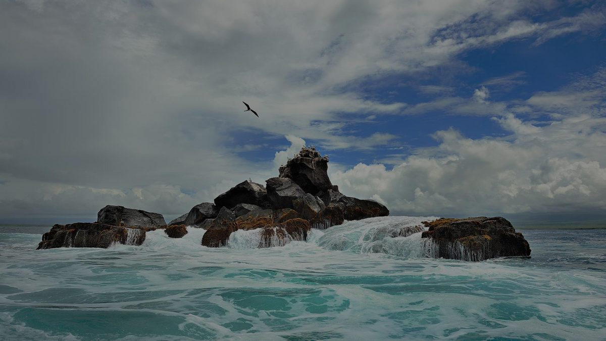 Appropriate luxury Galapagos hotel - working with nature