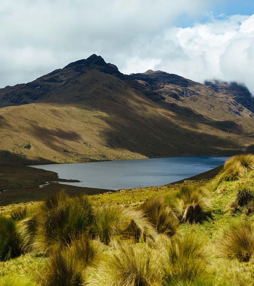 Andes Safari Extension