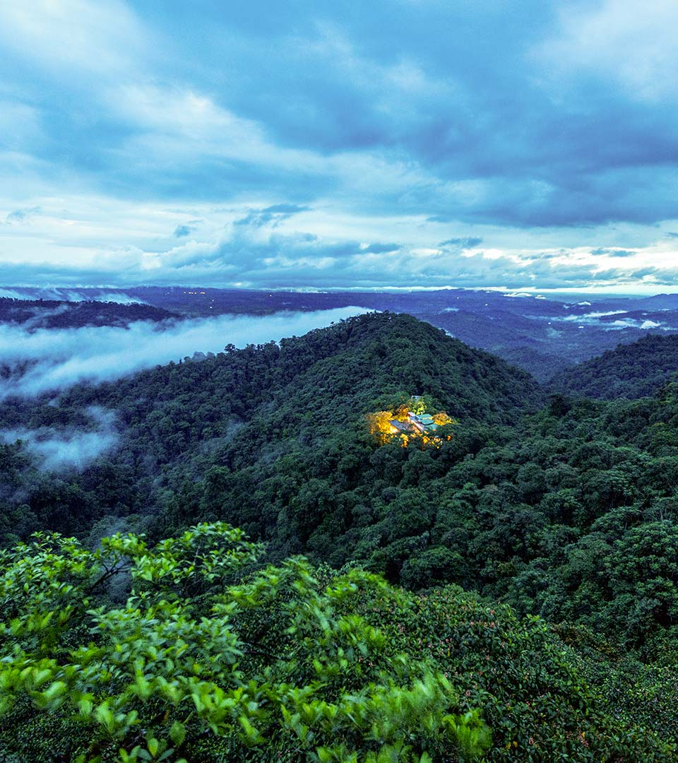Cloud Forest Extension