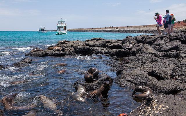 Day Sea Excursions