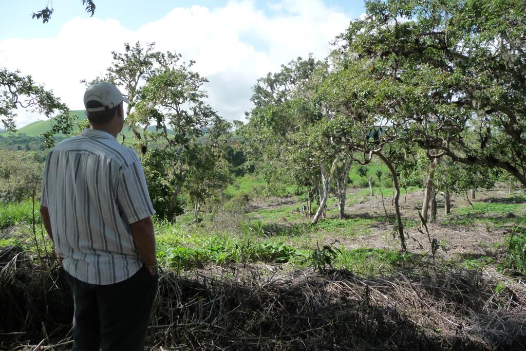 Galapagos Safari Camp reforestation programme